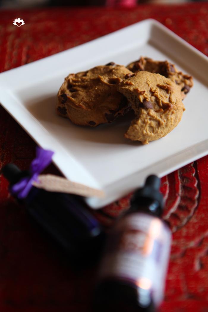 Vegan Chocolate Chip Cookies  Miami_Vegan_Gluten Free_Pamela Wasabi 00