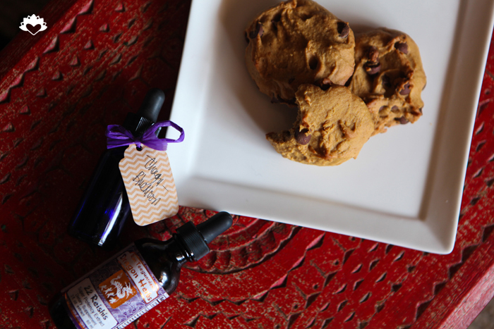 Vegan Chocolate Chip Cookies  Miami_Vegan_Gluten Free_Pamela Wasabi 03